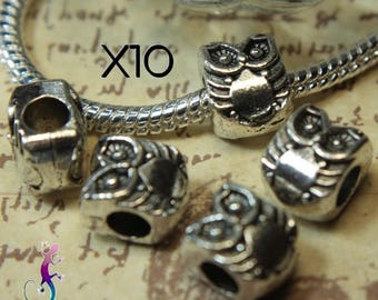 10 pearls European OWL metal charm in silver for European necklace or bracelet