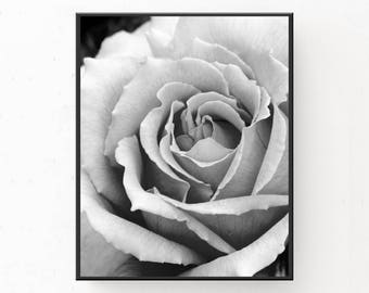 Black and White Print, Digital Download, Printable Wall Art, Rose Print, Printable Art, Rose Photograph, Rose Poster, Black White Print