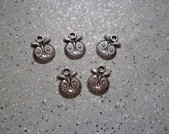 5 charms in silver owls, owls