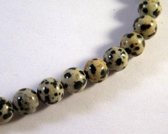 Dalmatian Jasper 8mm gem gemstone PP16 - round - 10 beads