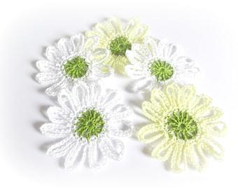 """5 large daisies 8 cm (3.15 """")"""