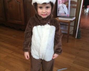 a cute squirrel costume