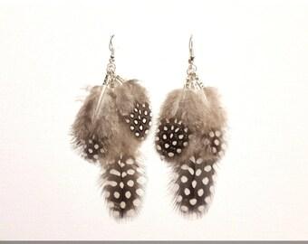 Natural polka dot Guinea fowl feather earrings