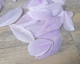 set of 10 Purple Violets feathers 5cm high
