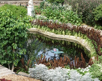 Botanical Gardens with Pond Photo Print or Canvas