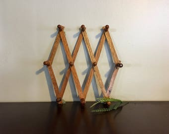 Vintage Accordian Peg Rack / Wall Hanging / Walnut Wooden Rack