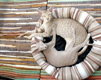 SET of TABLE original, plastic, washable and durable - oriental cat - circle - classic.