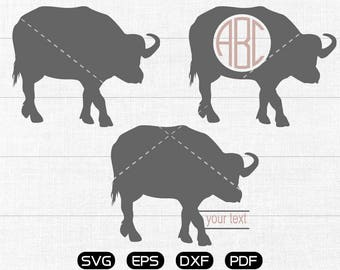 Buffalo Svg, Buffalo Clipart, Monogram Frame cricut, cameo, silhouette cut files commercial & personal use