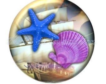 1 cabochon 30mm round glass, vacation, beach, Palm tree, starfish