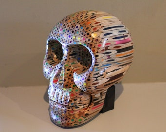 The Coloured Pencil 'Missing Link' Skull