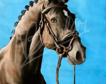 Solomon's Pride | Hanoverian | Horse head