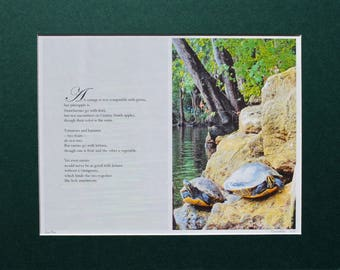 Unique Original Artwork by Bart Price, Photo Poem of Turtles, Artist Signed and Numbered, Matted, Photography, Poetry, Wall Art Print