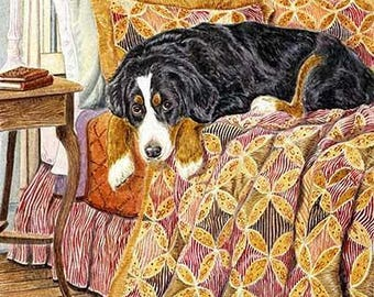 Bernese Guest Room A Limited Edition Bernese Mountain Dog Print