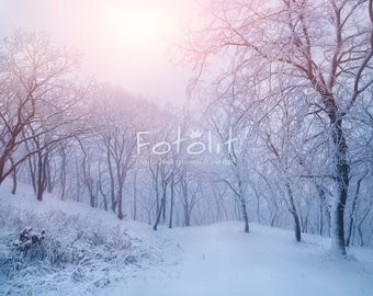 Winter digital background, winter backdrop, snowy background, winter forest photography, snow forest backdrop, Christmas background, sunrise