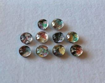 Vintage/ Floral/ Classic Magnet Set- Set of 10 Small