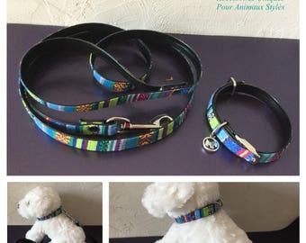 Inca style small dog collar and leash