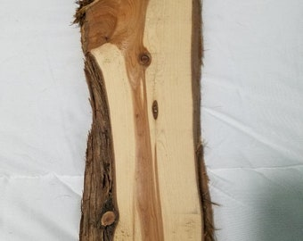 Unfinished Cedar Wood with Bark on sides for Craft Projects