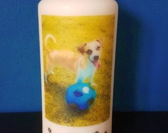 Personalised pet candle