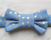 Gold Polka dot Bow Tie For Cats