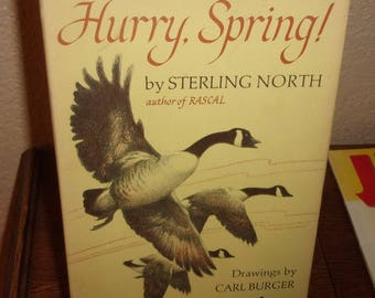 Hurry, Spring!-Sterling North-Hardcover Book w/Dj-1st Ed/2nd Printing 1966
