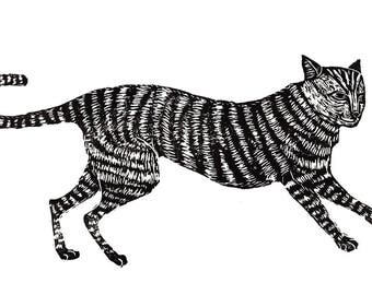 The Cat - Print