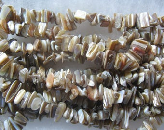 Mother of Pearl Shell Beads 2 - 6 inch Strands Natural Color