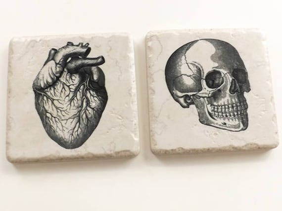 Tile Coasters, Anatomy gift, rustic look porcelain, cork back, satin finish, physician assistant, nurse practitioner, goth science biology
