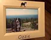 3 custom pet frames
