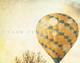 Hot Air Balloon, Tree Photography, Wall Decor, french photo art, clouds print, modern decor, landscape photograph, air balloon print