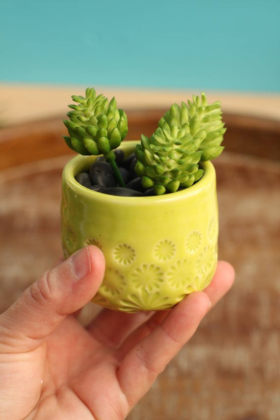lime green succulent planter // cactus planter // succulent pot // small ceramic pot // succulent gift