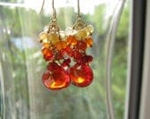 Genuine Red Zircon Earrings, Real Mexican Fire Opal Semi Precious Gemstone Cluster Earrings, 14KT Gold Filled, Ready To Ship, Gift Box 4 MOM
