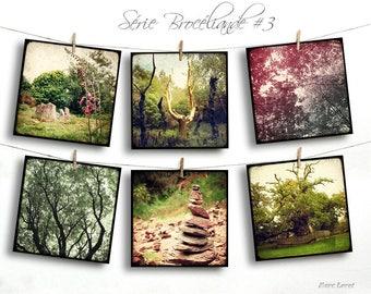 Set of six cards postcards 14 x 14 cm - 03 Brocéliande serie