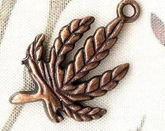 10 x 28x18mm - MAT1614 copper leaf charms