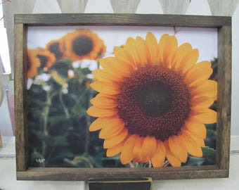 Sunflower Wall Art,Fall Wall Decor,Sunflowers,Handmade Shadowbox Frame,13x17,Donnie Quillen