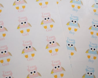 Gender Reveal Stickers Team Boy Team Girl Team Blue Team Pink Baby Owls in Diapers Gender Party- SES386