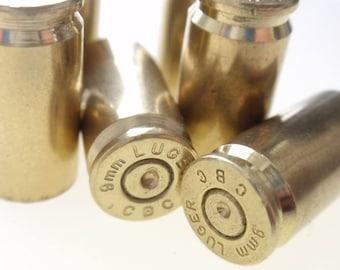 20 Mixed 9mm Empty Brass shells bullet casings brass shells rounds, cases, cartridges, empties, shells, reloads, reloading spent  gun