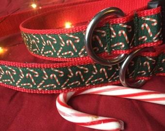 Candy Cane Collar, Christmas Dog Collar, Holiday collar, Christmas collar, festive dog collar, fun dog collar, red and green dog collar