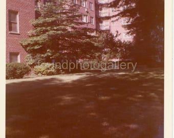 Vintage Photo, 1254 Clinton Place, Elizabeth New Jersey, Low-Rise Apartment Building, Brick Building, Snapshot, Landscape, Color Photo