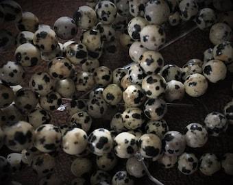 16 Inch Strand of Dalmation Jasper 6mm Beads