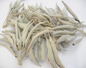 White Ceremonial Sage - Use for Incense, smudge, Native American, Reiki, and cleanser