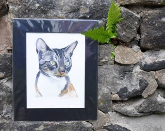 Cat -  Original Watercolor Painting, painted by C.Raven - 4x6inches MOUNTED to fit 8x10inches frame opening