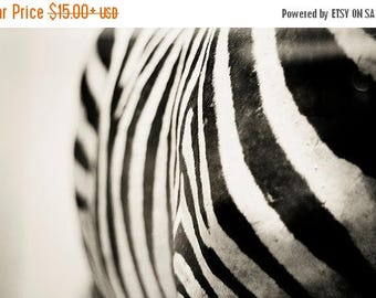 Zebra Print Wall Art Abstract Fine Art Photography Grey Black and White Photography Animal Photography Zebra Stripes