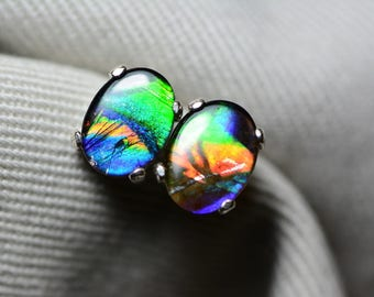 Ammolite Earrings, Ammolite Stud Earrings, Sterling Silver, 8x6mm Oval Cabochon, Alberta Canada Jewelry Jewellery, Pair #23