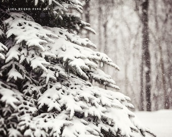 Nature Decor, Nature Pictures, Winter Pictures, Winter Art, Winter Photographs, Winter Snow Art, Winter Wall Decor, Nature Photography.
