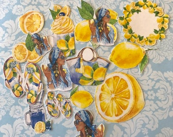 Summer Fresh Diva Lemon HUGE lot of 14 beautiful decorative planner stickers