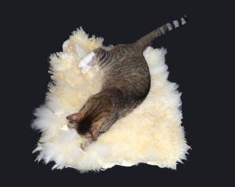 Cruelty Free, Teeswater Merino Cross, Cat Bed, Dog Mat, SheepFriendly, Humane Sheepskin, Felted Wool Fleece, Pet Rug, Natural Pet Bed