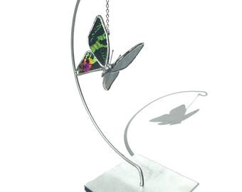 Real Butterfly Ornament Glass Sunset Moth