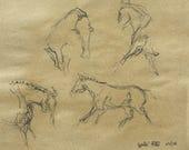 Live drawings, Horses Dre...