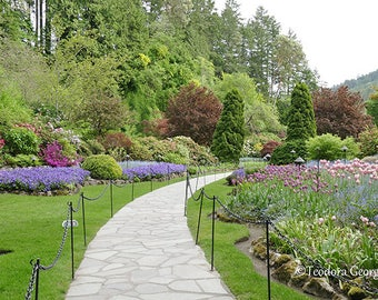 Beautiful Butchart Garden Photography, Botanical, Garden Photography