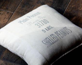 Pillow Cover, Throw Pillow, Georgia Peanut Sack, Repurposed, Home Decor, Accent Pillow
